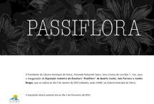 Passiflora - Galeria Municipal de Sintra 2010